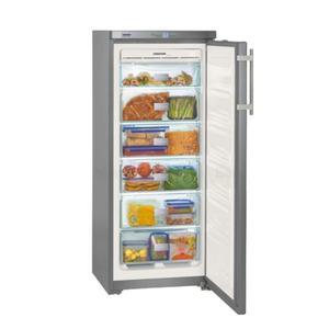 Congélateur armoire gnsl 2323/-22